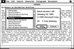WordMac1985