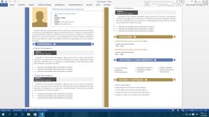 Plantilla de currículum vista original Microsoft World
