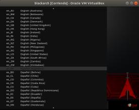 blackarch [Corriendo] - Oracle VM VirtualBox_004