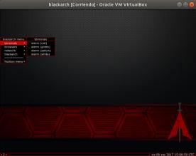 blackarch [Corriendo] - Oracle VM VirtualBox_006